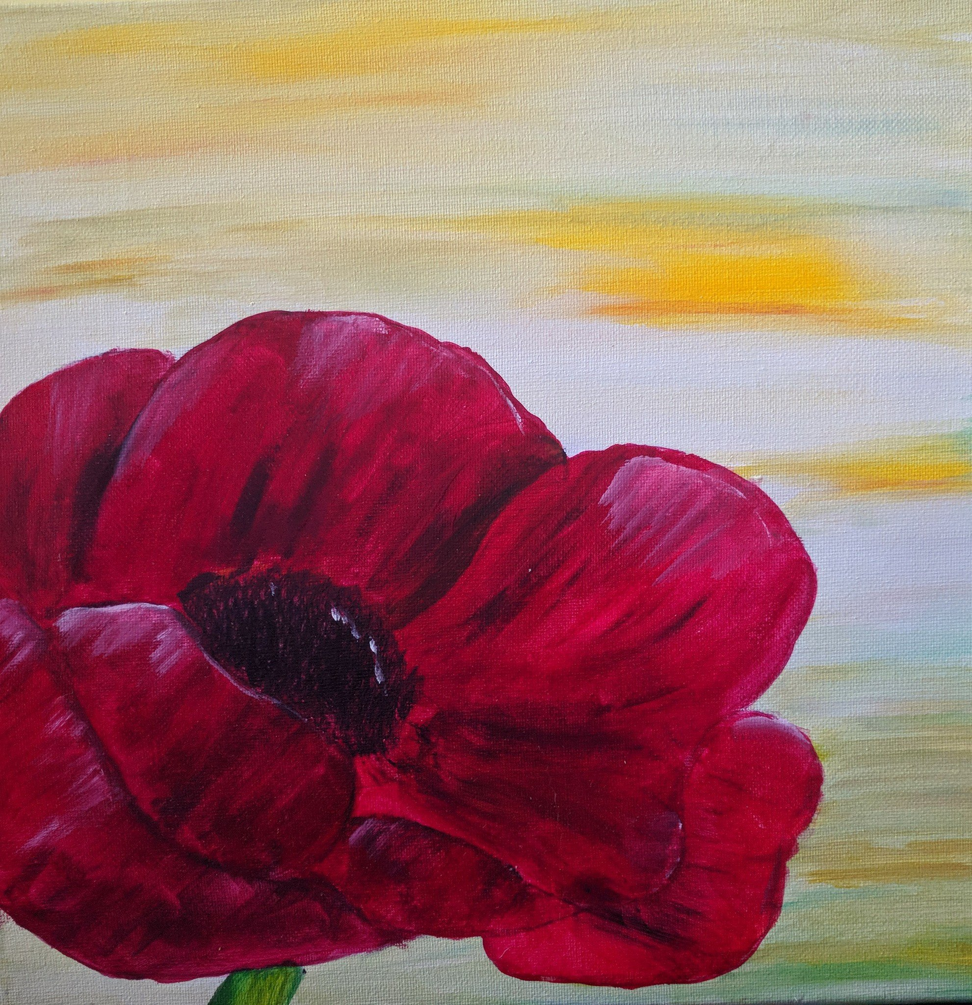 Weekly Update Mctell Brothers And Poppy Flowers The Kenmore Inn